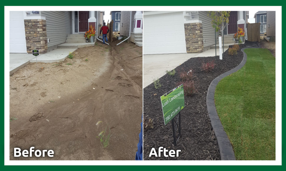 before after landscaping and yard restoration